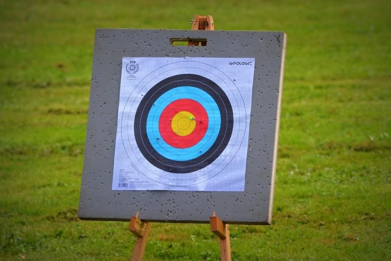 aim-for-arrows-in-meadow