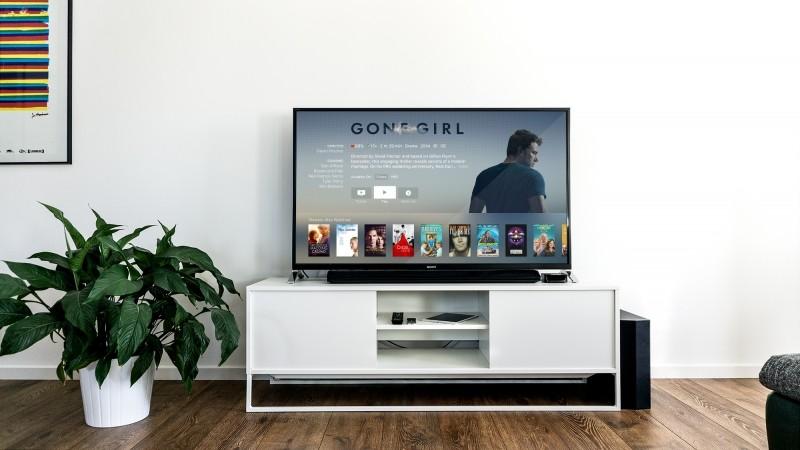 plant-indoor-television